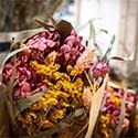 Vases & Fleurs